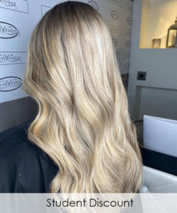 Student Discount at Louise Fudge hair salons